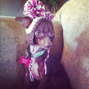 Adoption day - likely stoned on Benadryl